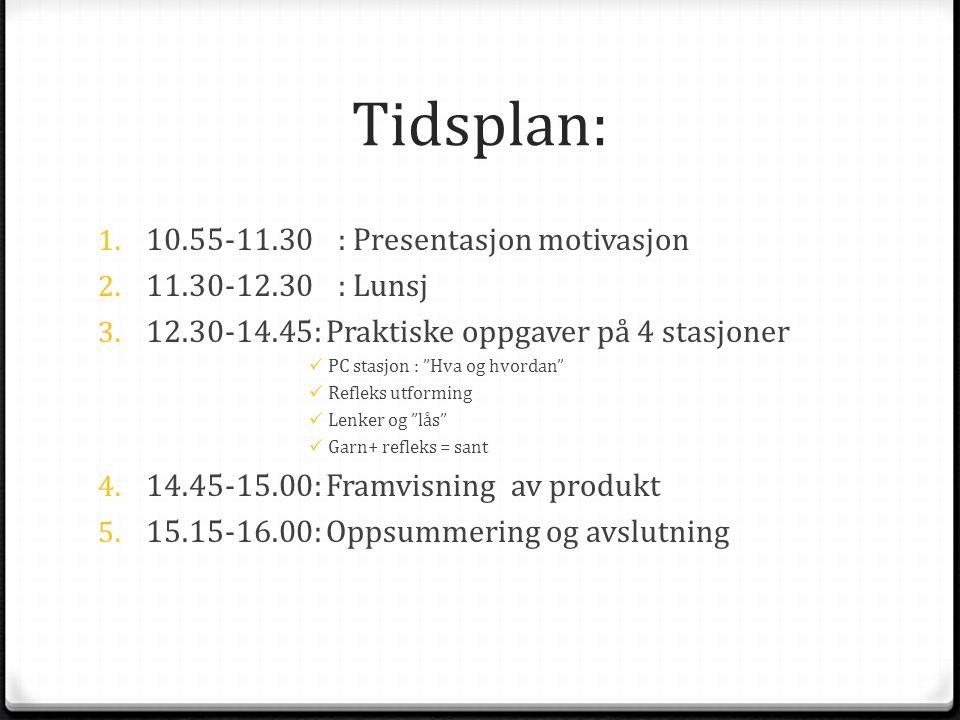 Tidsplan: 10.55-11.30 : Presentasjon motivasjon 11.30-12.30 : Lunsj