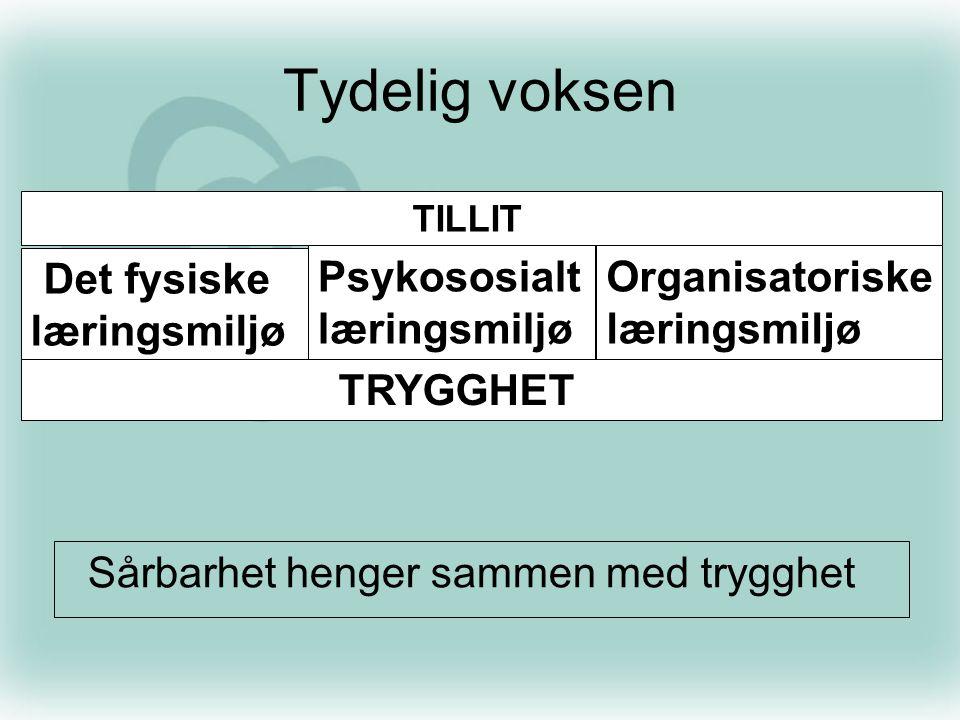 Tydelig voksen Psykososialt læringsmiljø Organisatoriske læringsmiljø