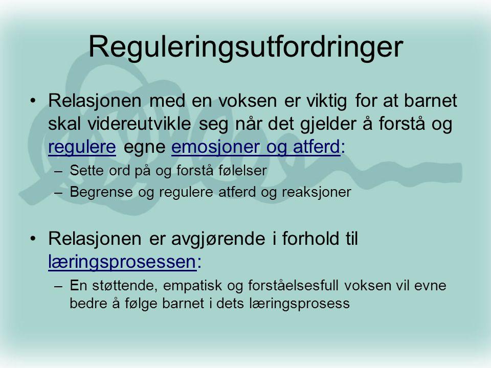 Reguleringsutfordringer