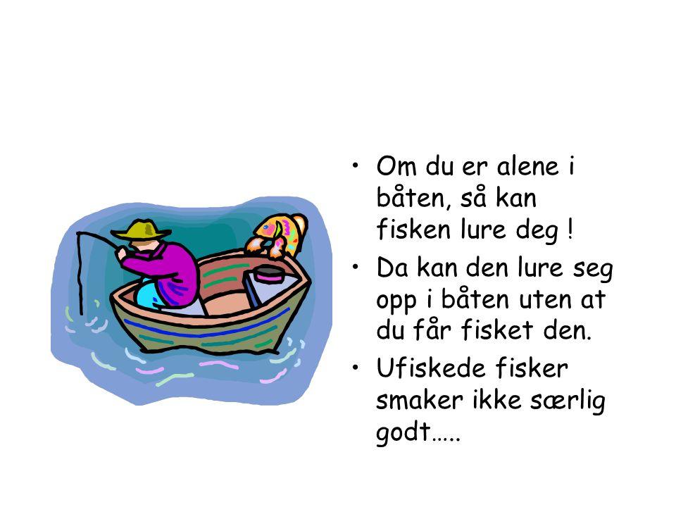 Om du er alene i båten, så kan fisken lure deg !