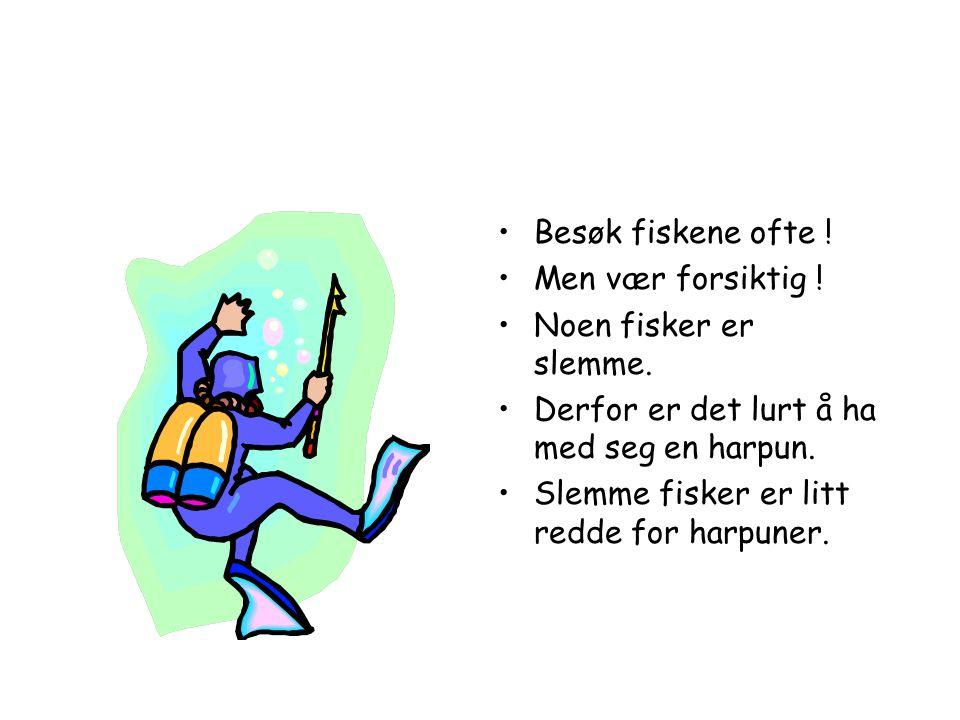 Besøk fiskene ofte ! Men vær forsiktig ! Noen fisker er slemme. Derfor er det lurt å ha med seg en harpun.