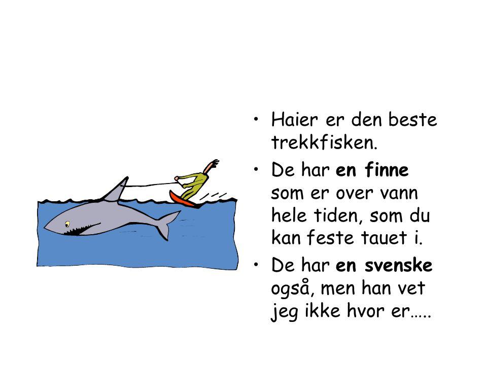 Haier er den beste trekkfisken.