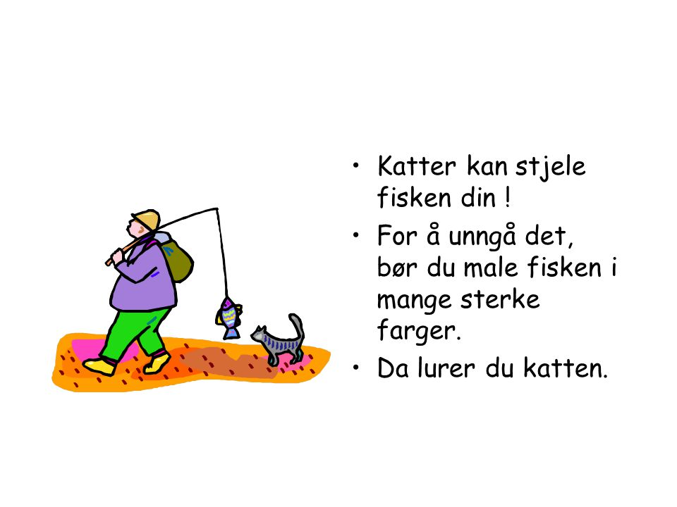 Katter kan stjele fisken din !