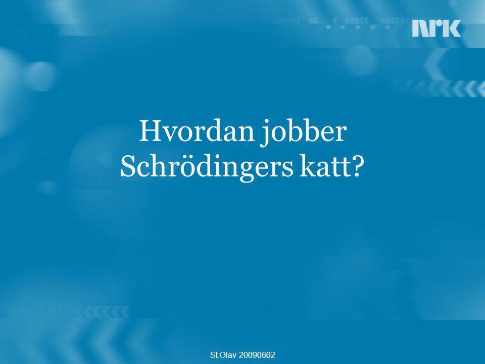 Hvordan jobber Schrödingers katt