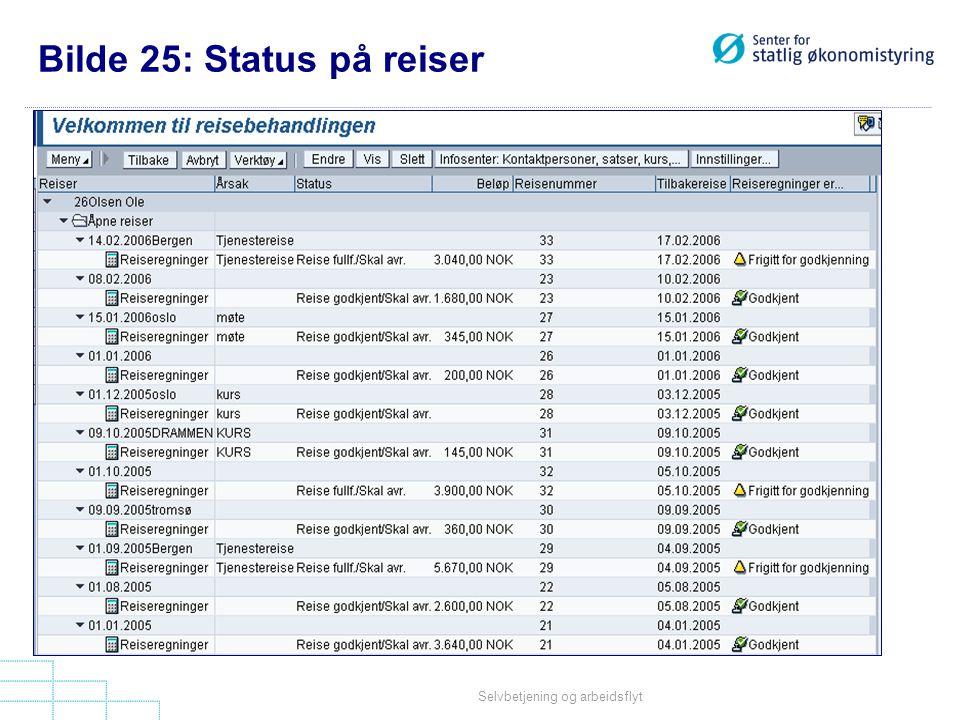 Bilde 25: Status på reiser