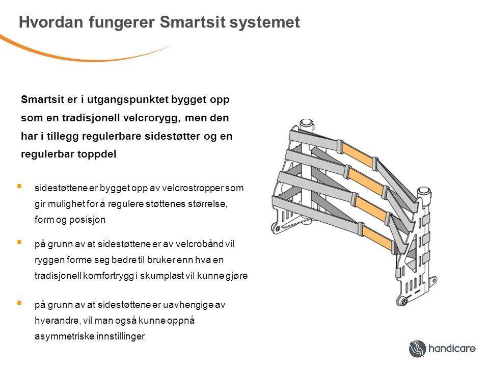 Hvordan fungerer Smartsit systemet