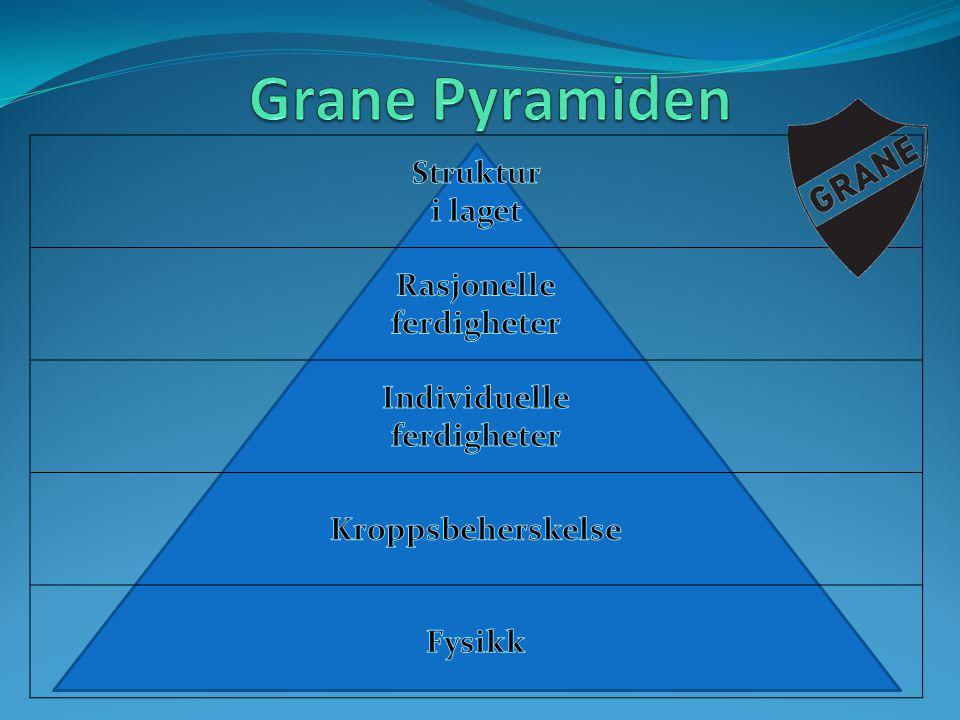 Grane Pyramiden Struktur i laget Rasjonelle ferdigheter Individuelle