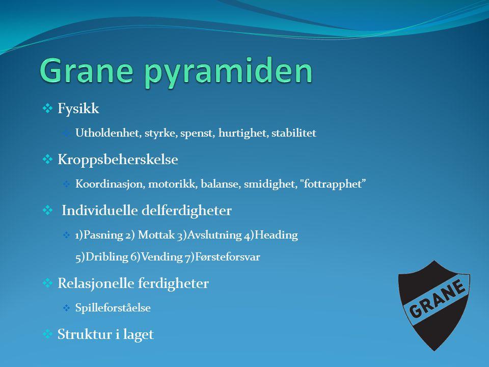 Grane pyramiden Fysikk Kroppsbeherskelse Individuelle delferdigheter