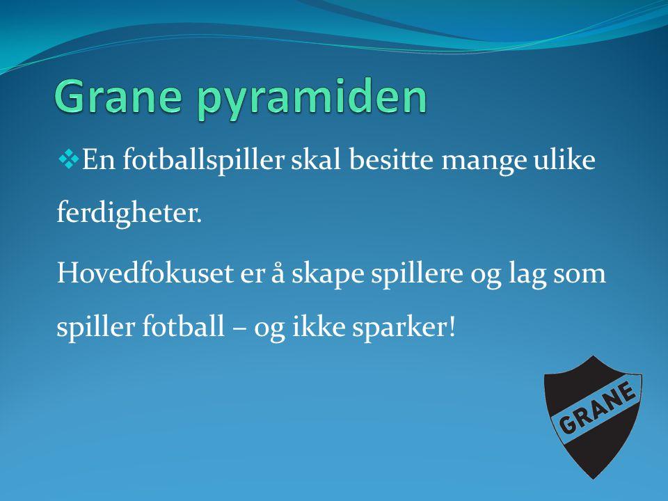 Grane pyramiden En fotballspiller skal besitte mange ulike ferdigheter.