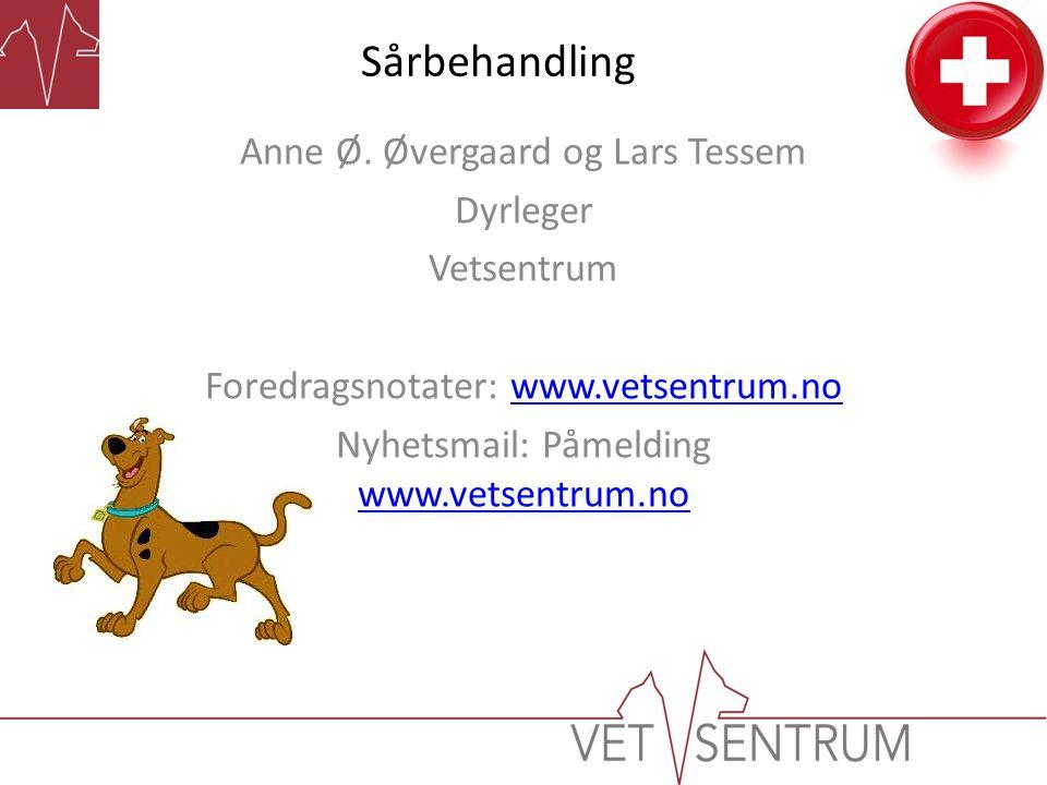 Sårbehandling Anne Ø. Øvergaard og Lars Tessem Dyrleger Vetsentrum