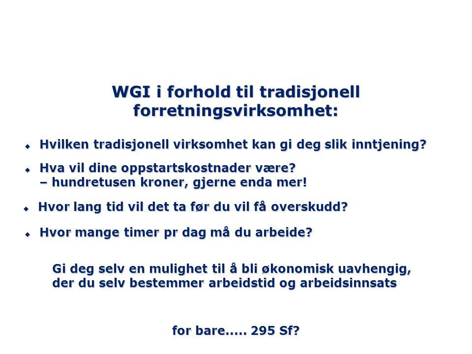 WGI i forhold til tradisjonell forretningsvirksomhet: