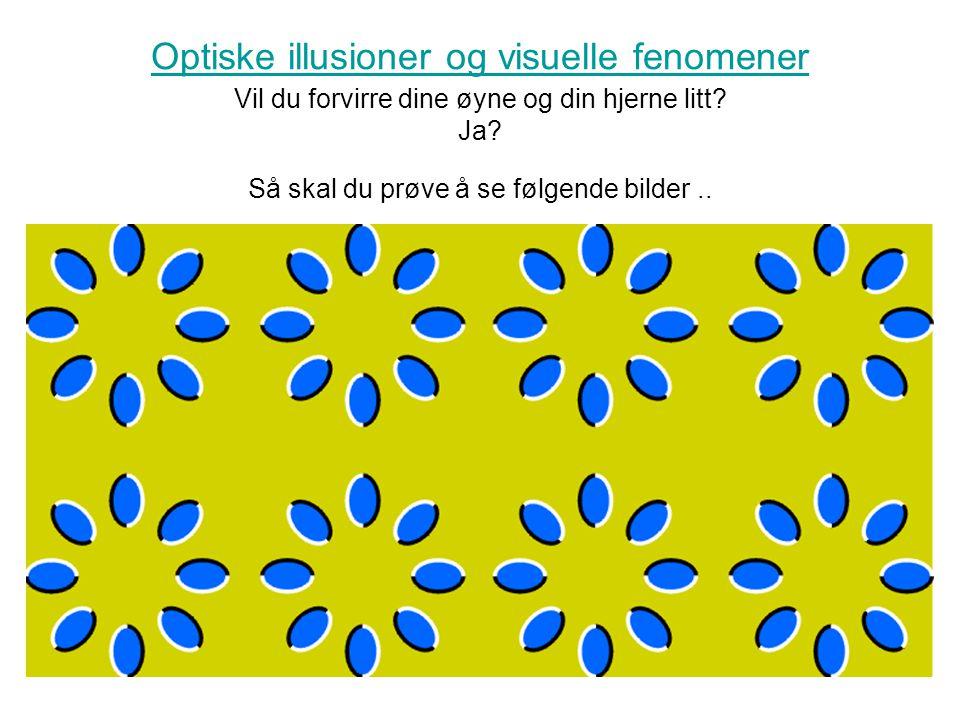 Optiske illusioner og visuelle fenomener Vil du forvirre dine øyne og din hjerne litt.