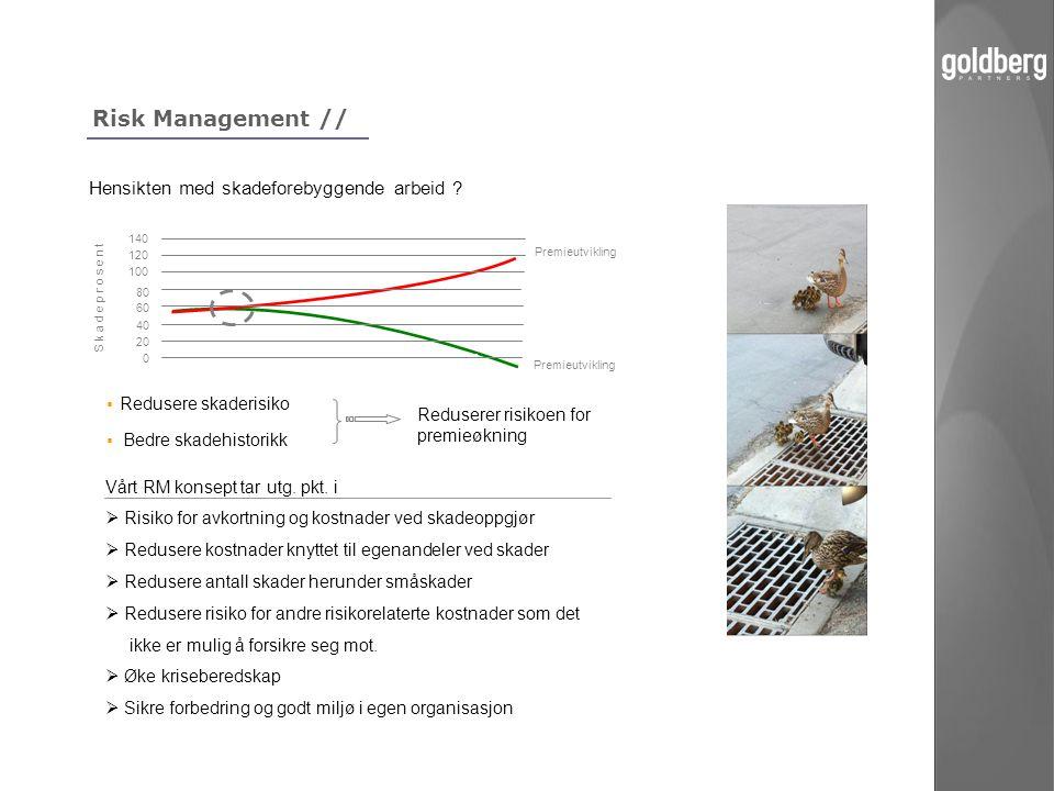 Risk Management // Hensikten med skadeforebyggende arbeid