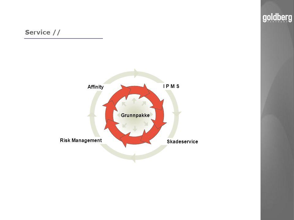 Service // Affinity I P M S Grunnpakke Risk Management Skadeservice