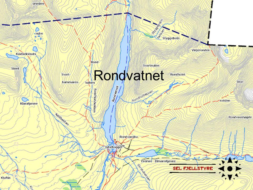 Rondvatnet