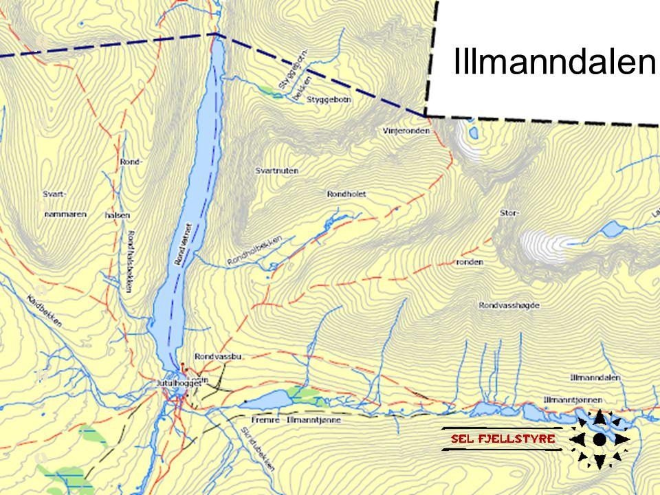 Illmanndalen