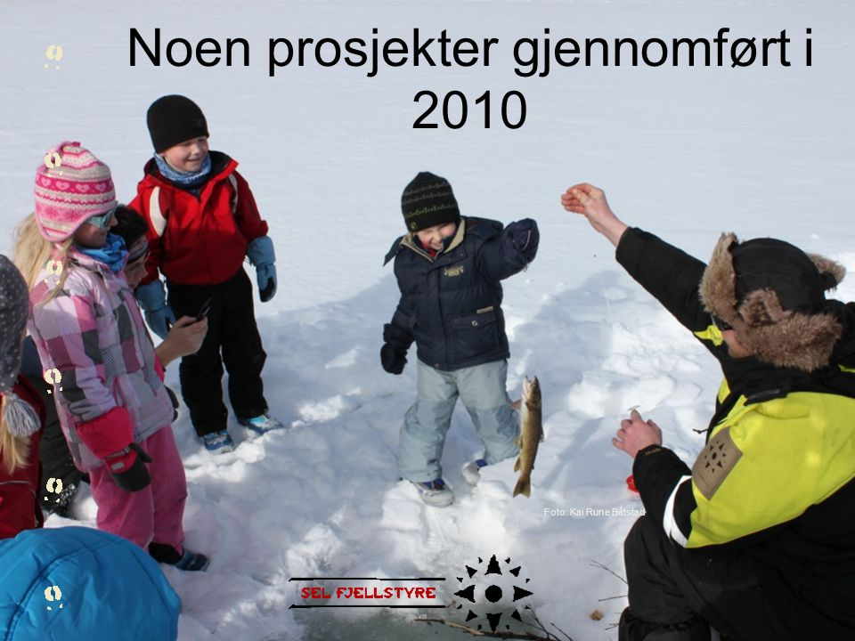 Noen prosjekter gjennomført i 2010