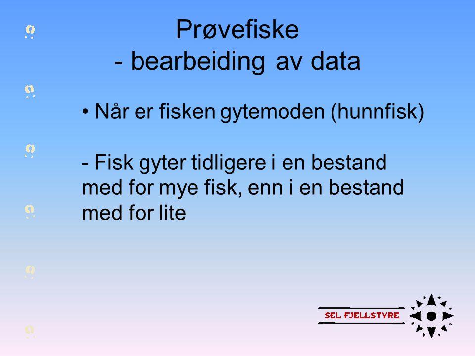 Prøvefiske - bearbeiding av data