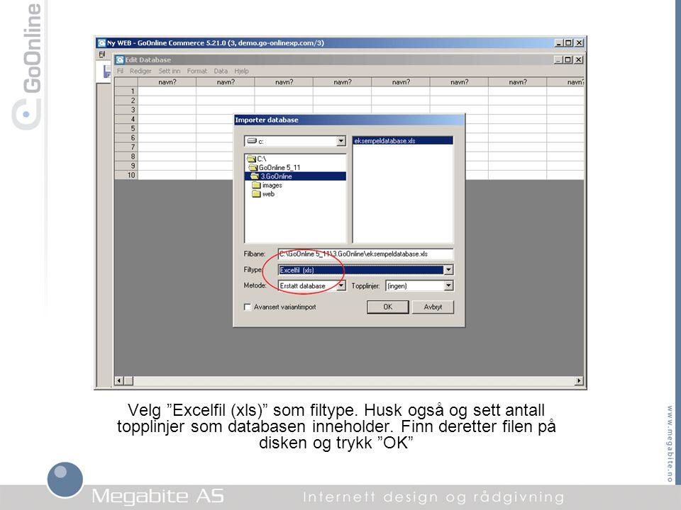 Velg Excelfil (xls) som filtype
