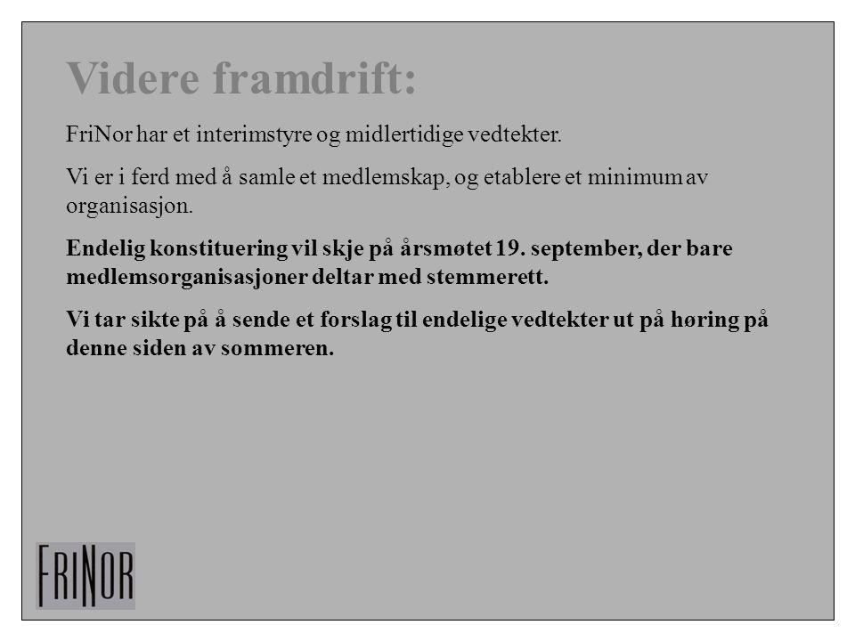 Videre framdrift: FriNor har et interimstyre og midlertidige vedtekter.