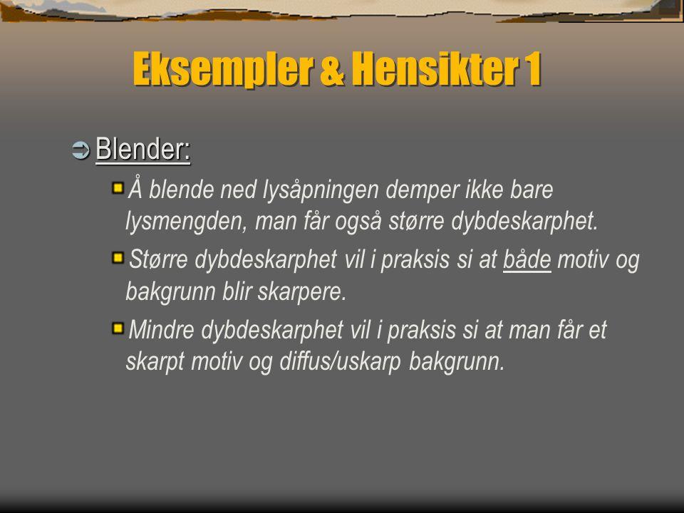 Eksempler & Hensikter 1 Blender: