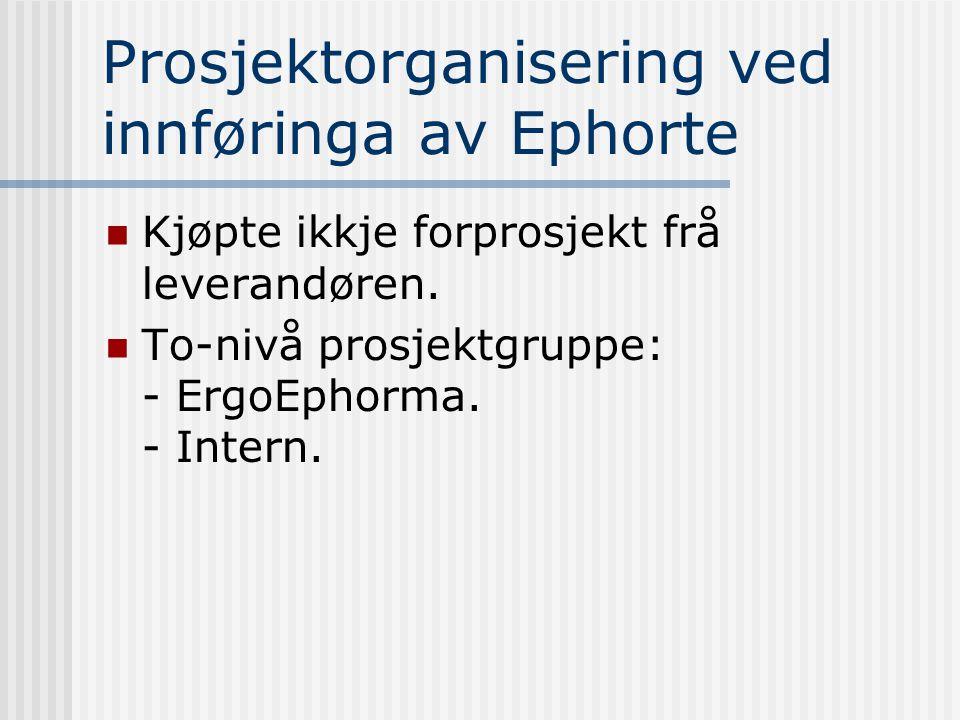Prosjektorganisering ved innføringa av Ephorte