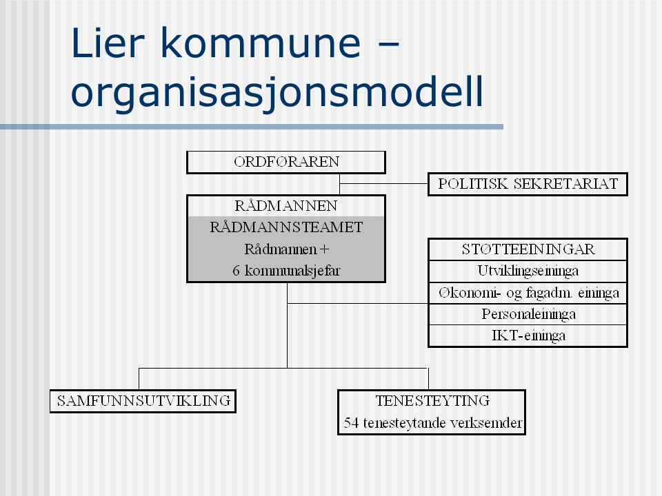 Lier kommune – organisasjonsmodell