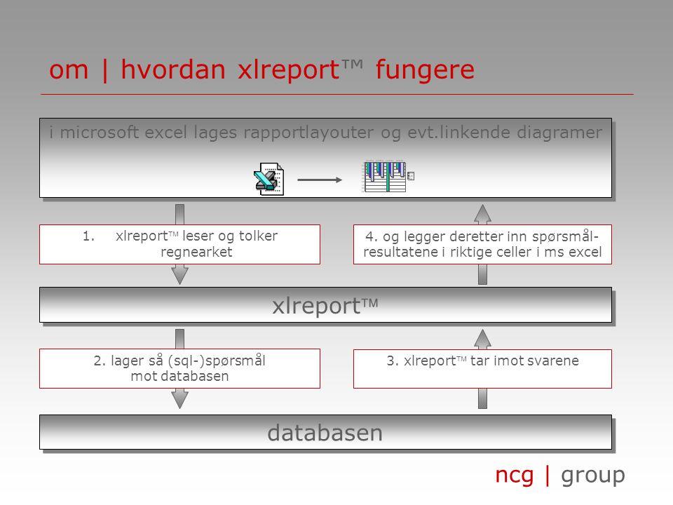 om | hvordan xlreport™ fungere
