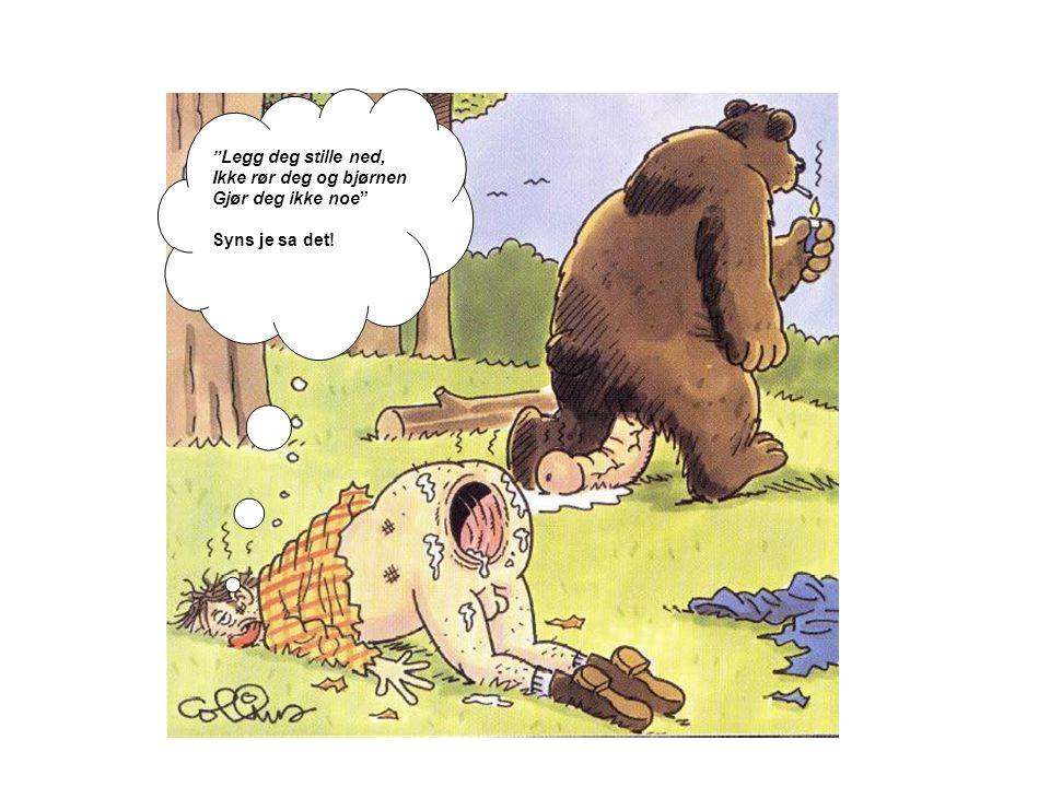 Legg deg stille ned, Ikke rør deg og bjørnen Gjør deg ikke noe Syns je sa det!