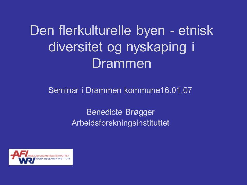 Den flerkulturelle byen - etnisk diversitet og nyskaping i Drammen