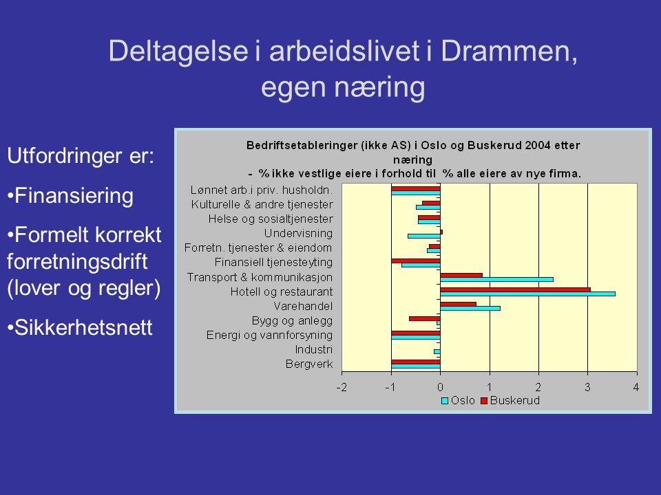 Deltagelse i arbeidslivet i Drammen, egen næring
