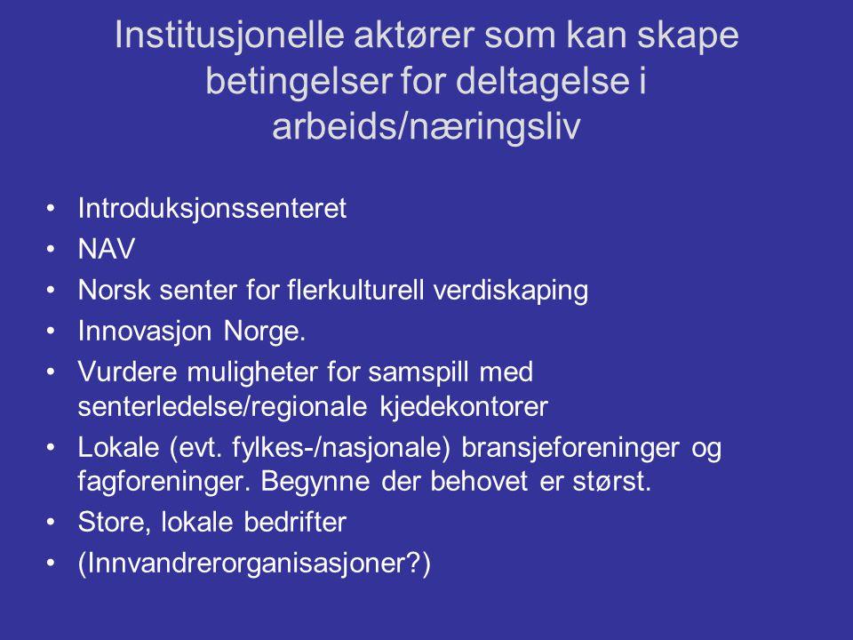 Institusjonelle aktører som kan skape betingelser for deltagelse i arbeids/næringsliv