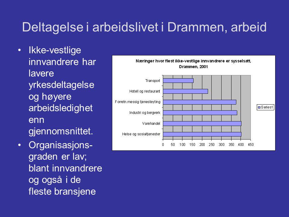 Deltagelse i arbeidslivet i Drammen, arbeid