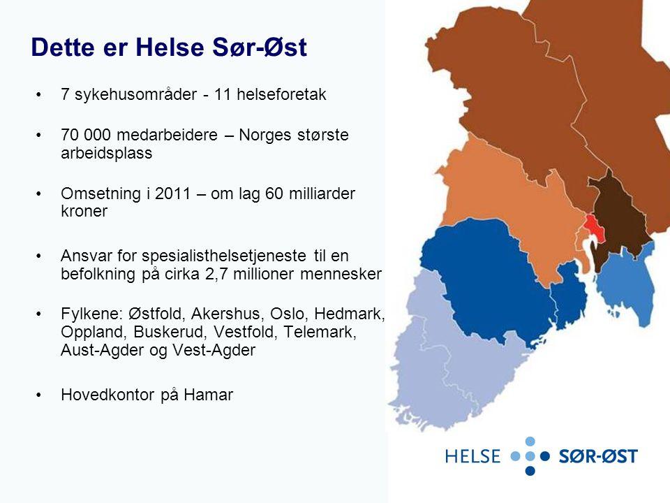 Dette er Helse Sør-Øst 7 sykehusområder - 11 helseforetak