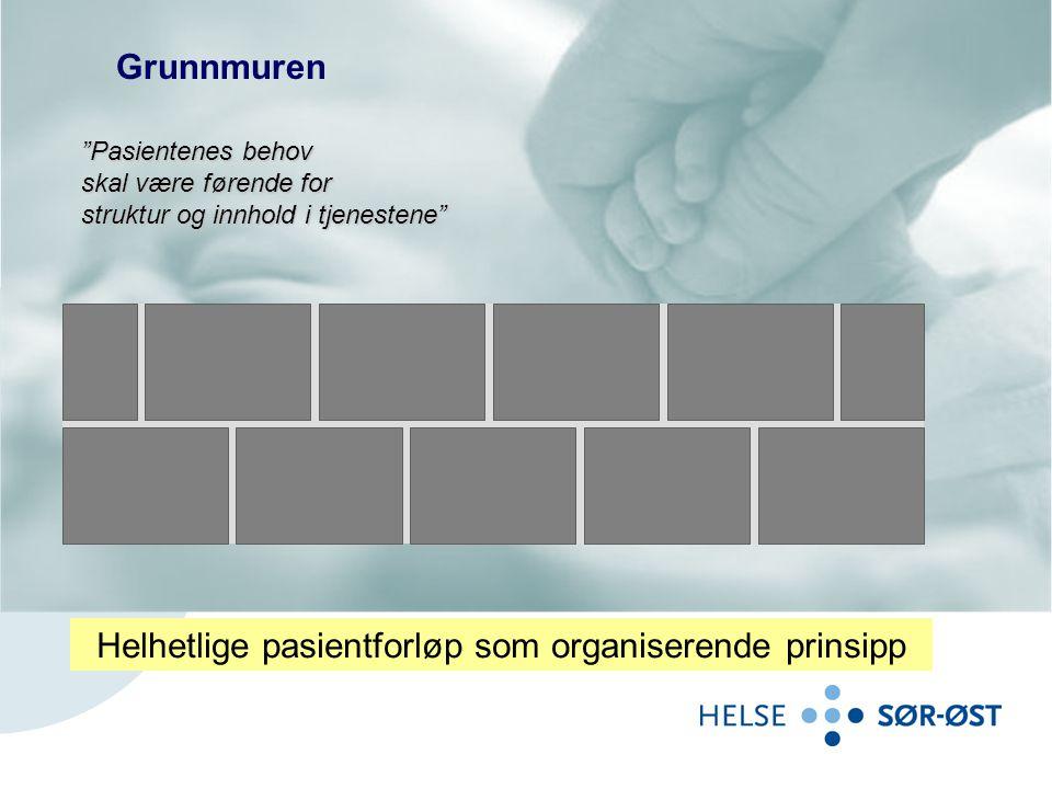 Helhetlige pasientforløp som organiserende prinsipp