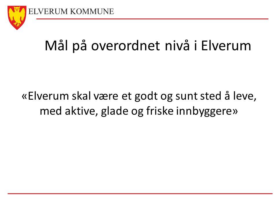 Mål på overordnet nivå i Elverum