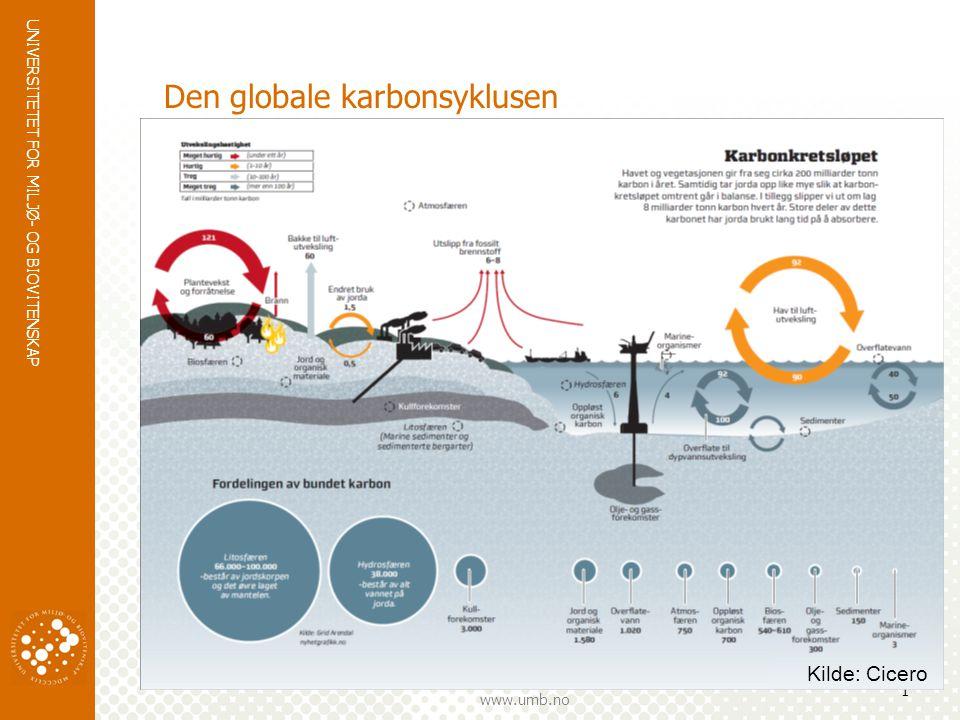 Den globale karbonsyklusen