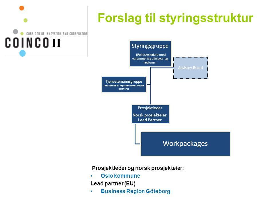 Forslag til styringsstruktur