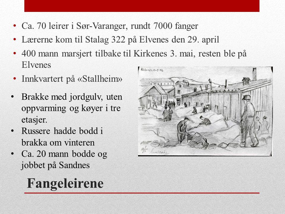 Fangeleirene Ca. 70 leirer i Sør-Varanger, rundt 7000 fanger