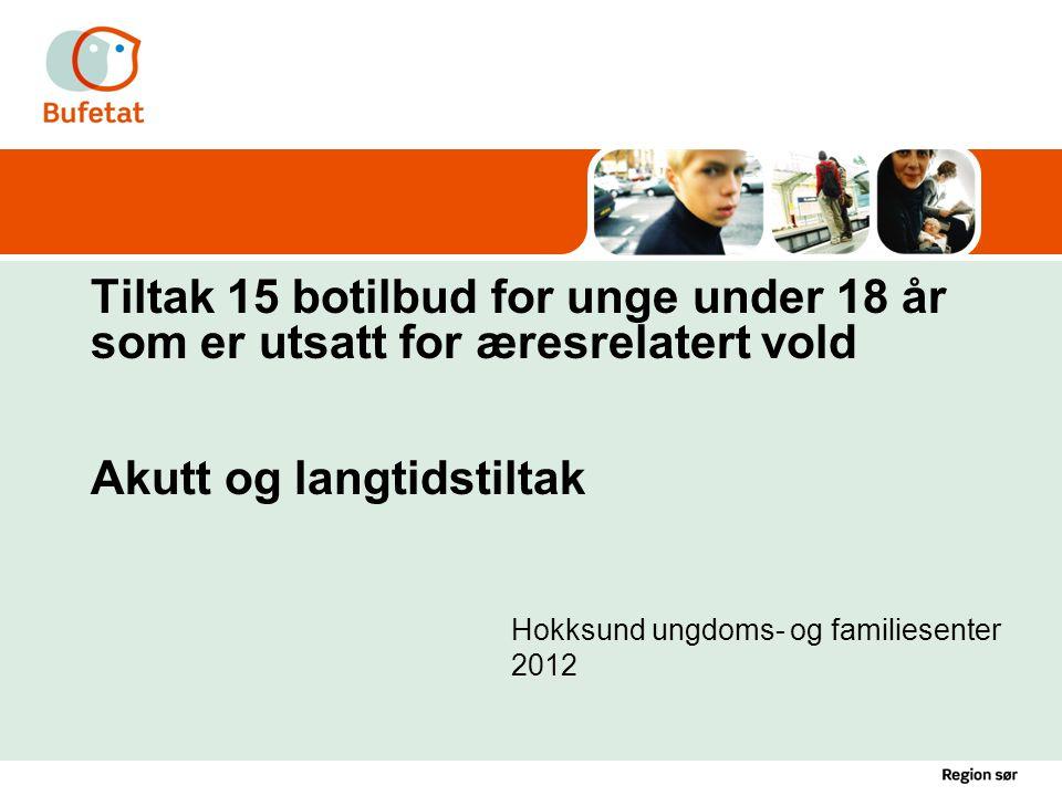 Hokksund ungdoms- og familiesenter 2012