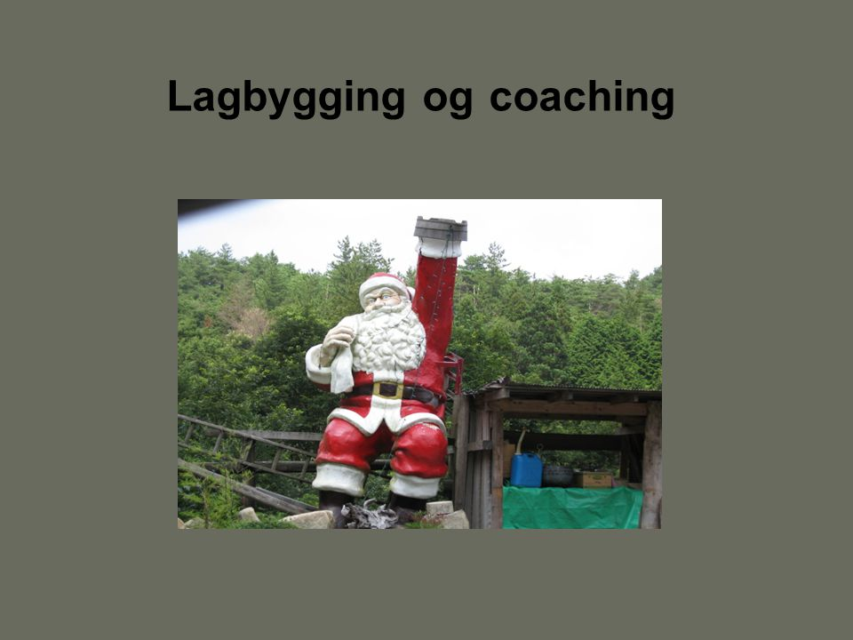 Lagbygging og coaching