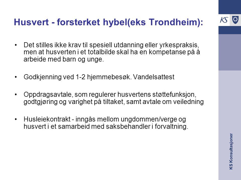 Husvert - forsterket hybel(eks Trondheim):