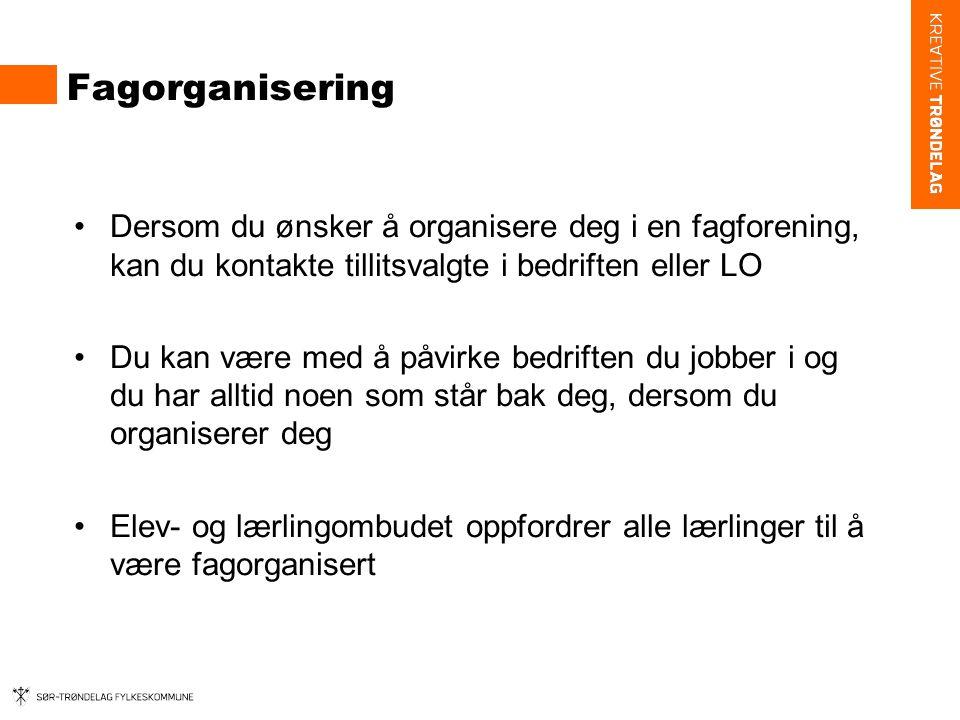 Fagorganisering Dersom du ønsker å organisere deg i en fagforening, kan du kontakte tillitsvalgte i bedriften eller LO.
