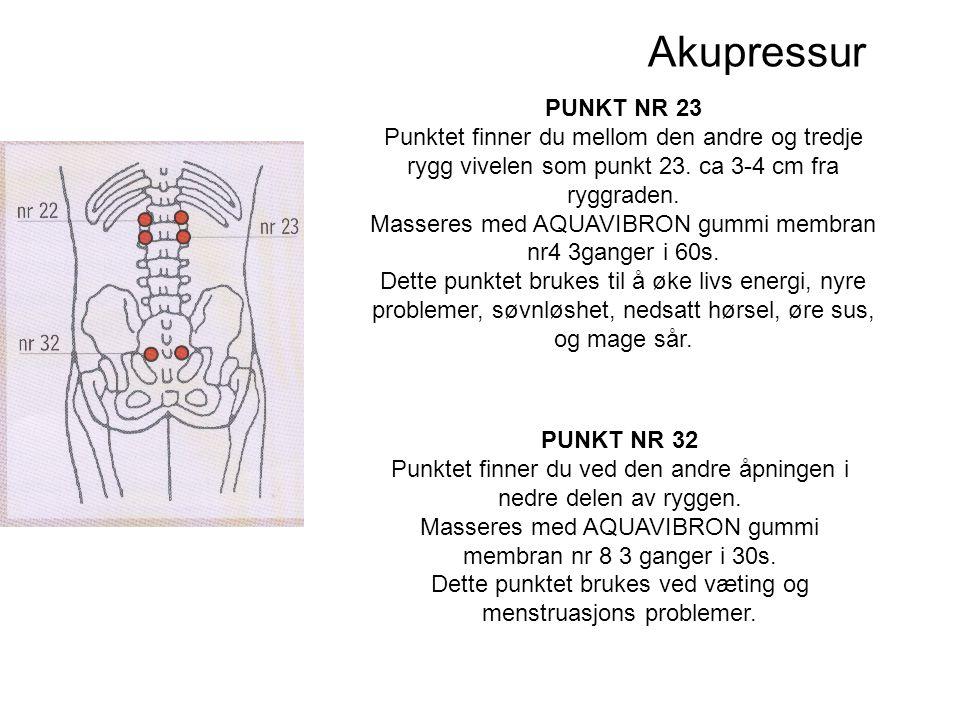 Akupressur PUNKT NR 23. Punktet finner du mellom den andre og tredje rygg vivelen som punkt 23. ca 3-4 cm fra ryggraden.