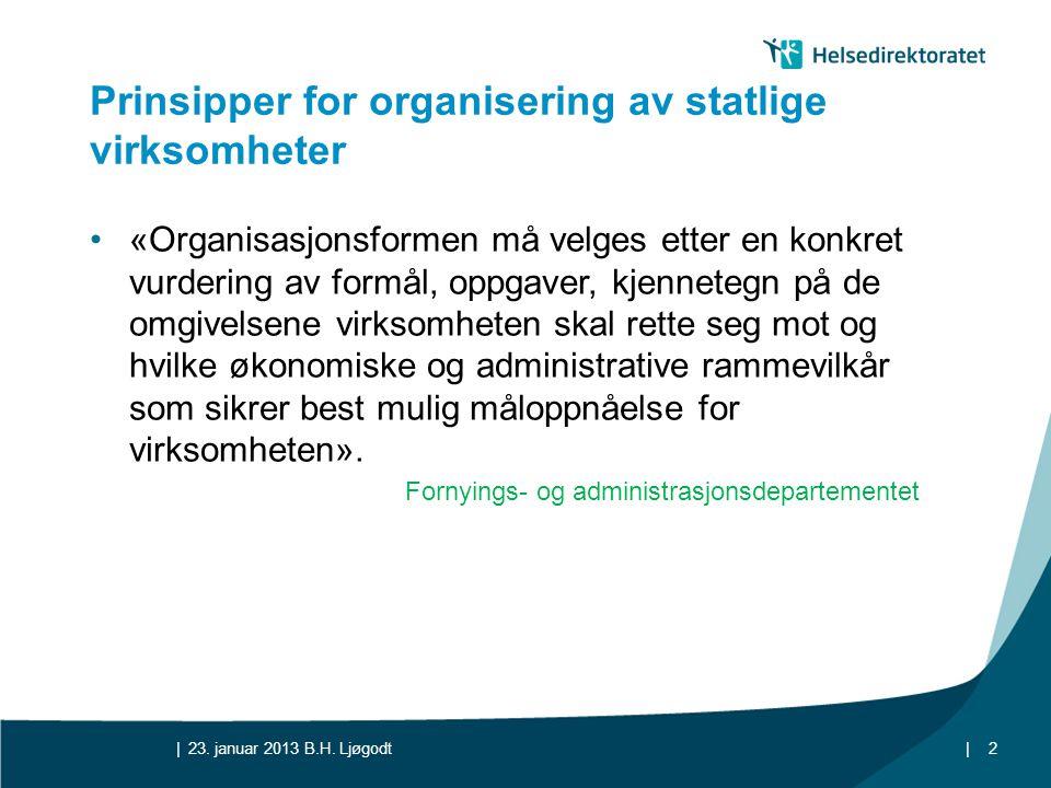 Prinsipper for organisering av statlige virksomheter