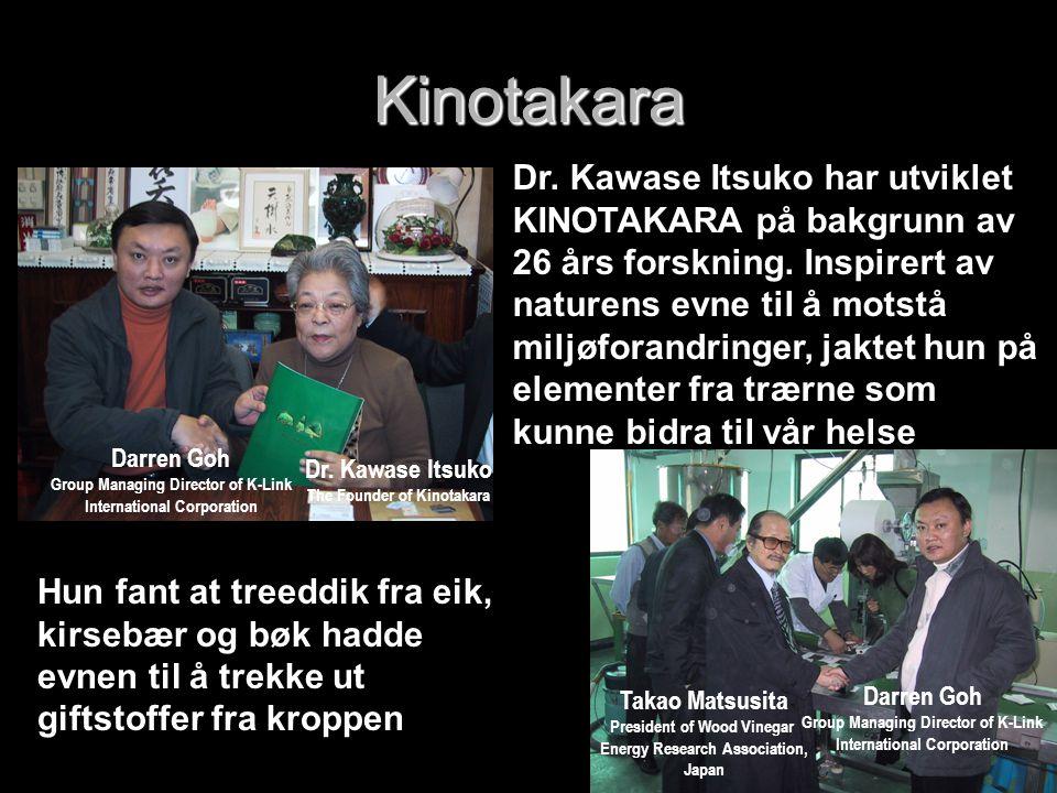 Kinotakara Kinotakara