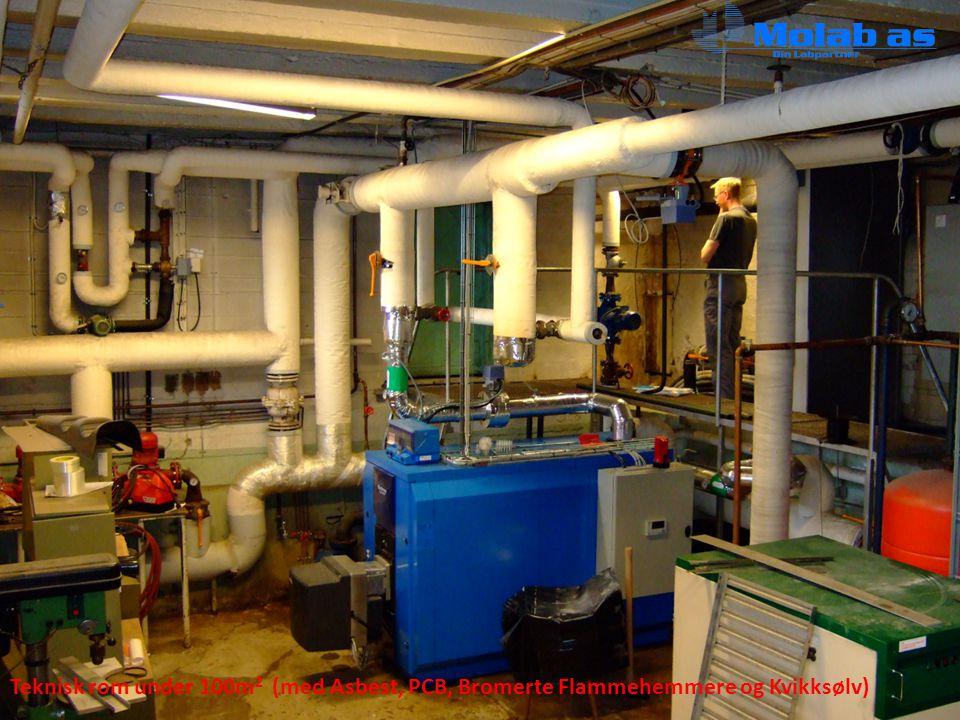 Teknisk rom under 100m2 (med Asbest, PCB, Bromerte Flammehemmere og Kvikksølv)