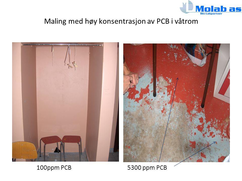 Maling med høy konsentrasjon av PCB i våtrom