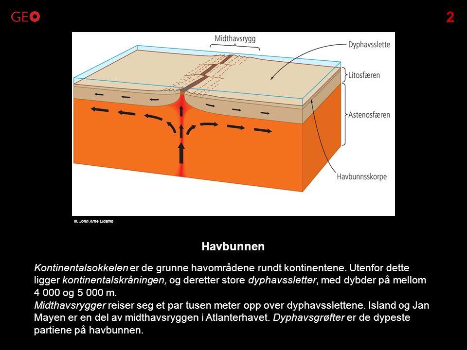 2 Ill: John Arne Eidsmo. Havbunnen.