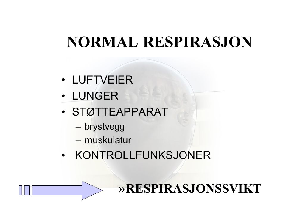 NORMAL RESPIRASJON RESPIRASJONSSVIKT LUFTVEIER LUNGER STØTTEAPPARAT